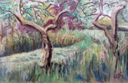 chalk artwork old appletree orchard