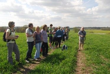 HCC Guided Walk – 5 May